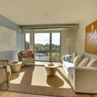 3021 Holmes Apartments - Minneapolis, MN 55408