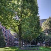 Potomac Towers - Arlington, VA 22201