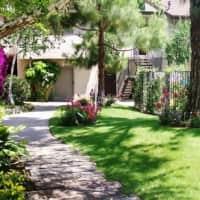Amber Pines - Upland, CA 91786