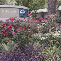 Timberland Apartments - Savannah, GA 31419