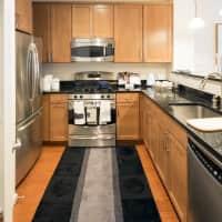 Dwell Vienna Metro Apartments - Fairfax, VA 22031