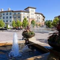 Avalon Walnut Creek - Walnut Creek, CA 94597