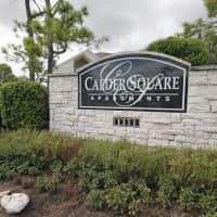 Calder Square - League City, TX 77573