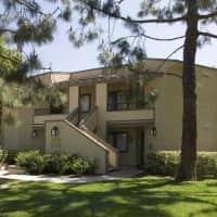 Cedar Creek - Irvine, CA 92604