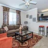 Palacio Apartments - Las Vegas, NV 89149
