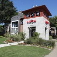 Lure at Cedar Springs - Dallas, TX 75219