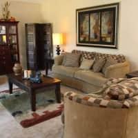 River View Apartments - Tampa, FL 33617