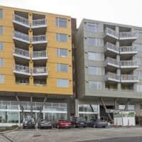 Angeline - Seattle, WA 98118