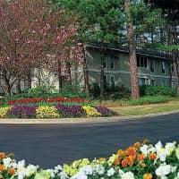 Ivy Place - Atlanta, GA 30329