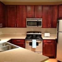 Residology Furnished Apartments - San Antonio, TX 78229