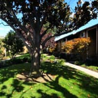 Shadow Oaks - Cupertino, CA 95014