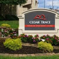 Cedar Trace - Maryland Heights, MO 63043
