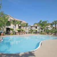 Lakeview Oaks - Tampa, FL 33613