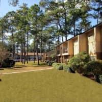 Pinetree Gardens - Gainesville, FL 32607