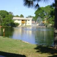 Tarponwood Lake - Tarpon Springs, FL 34689