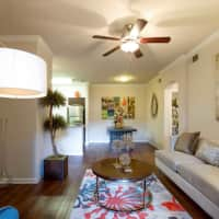 Nolina Flats - Austin, TX 78726