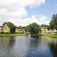 Lofton Place - Tampa, FL 33624