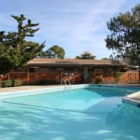 Cherry Blossom Apartments - Sunnyvale, CA 94086