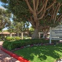 Camarillo Oaks - Camarillo, CA 93010