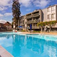 South Shore Beach And Tennis Club - Alameda, CA 94501