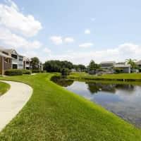 Arium Bay Pointe - Tampa, FL 33615