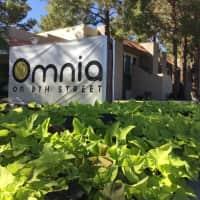 Omnia on 8th Street - Tempe, AZ 85281