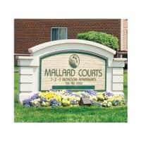 Mallard Courts Apartments - Alexandria, VA 22309