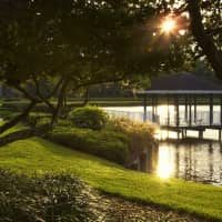 Lakeside Apartments - Brandon, FL 33511