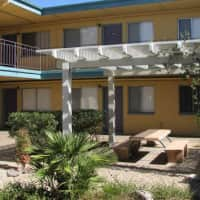 Palm Shadows Apartments - Tucson, AZ 85719