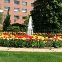 Dorchester Towers - Arlington, VA 22204