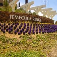 Temecula Ridge - Temecula, CA 92591