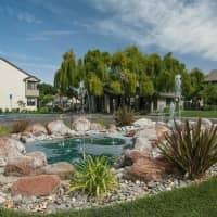 Meadow Ridge Apartment Homes - Davis, CA 95618