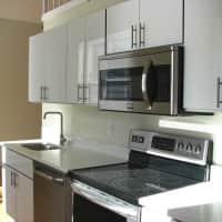 Bulldog Apartments - New Haven, CT 06510