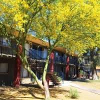 Mirabella - Tucson, AZ 85710