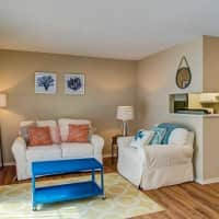 The Forest - Durham, NC 27705