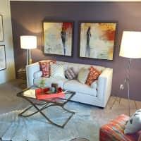 Level 550 Apartments - Mesa, AZ 85203
