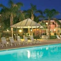 Club Cancun - Chandler, AZ 85226