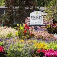 Plumtree Apartments - Lansing, MI 48917