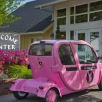 The Whimsical Pig Apartments - Spokane Valley, WA 99216