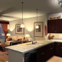 The Amelia Apartments - Houston, TX 77055
