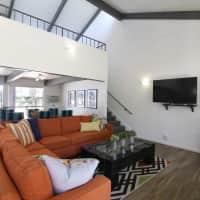 Shasta Lane - La Mesa, CA 91942