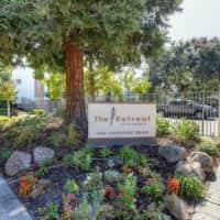 The Retreat - Walnut Creek, CA 94596