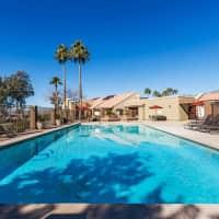 Chandler Court - Chandler, AZ 85226