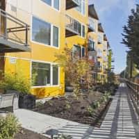 Janus - Seattle, WA 98117