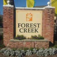 Forest Creek - Houston, TX 77049