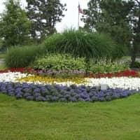 Village Green of Belleville - Belleville, MI 48111