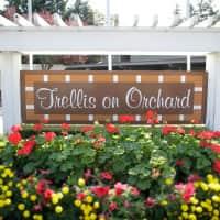 Trellis on Orchard - Tacoma, WA 98467