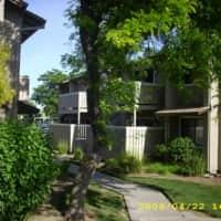Shade Tree - Woodland, CA 95695