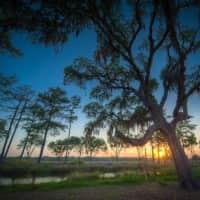 Grand Oaks at Ogeechee River - Savannah, GA 31419