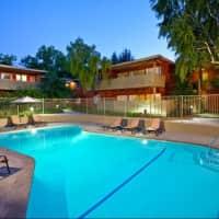 Bay Tree - Los Gatos, CA 95030